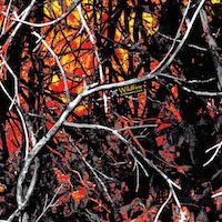 Moonshine Wildfire print