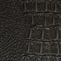 exotic - ebony croc