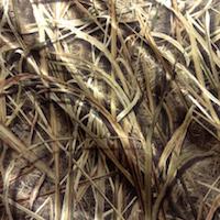 Mossy Oak Blades print