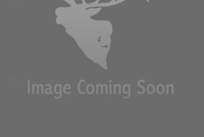traced-logo