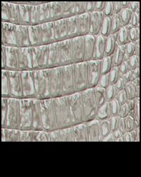 Bone Croc